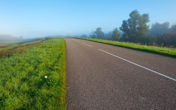 Road through ahazy sunny landscape