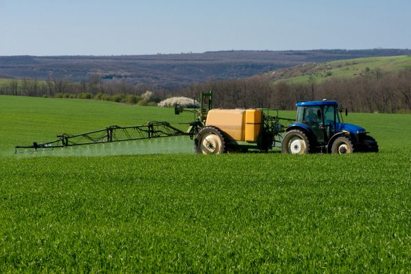 Tractor spraying pesticide in afield of wheat - copy space